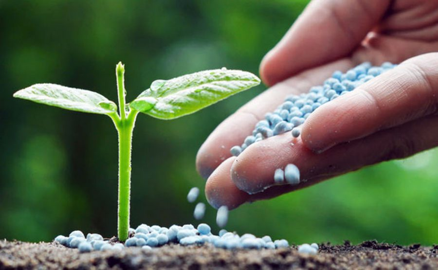 Dangers of Synthetic Fertilizers - Organic Livestock And Crops Owners  Association Of Nigeria